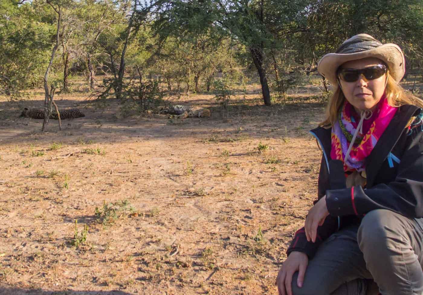 guepardos moditlo sudafrica